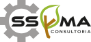 Consultoría SSYMA